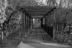 Wooden tunnel arch in Saint Petersburg botanical garden public property. Wooden tunnel arch  Saint Petersburg botanical garden, black and white Royalty Free Stock Image