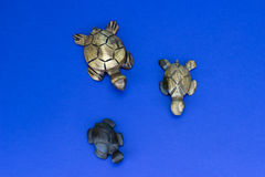Wooden turtle figurines. On blue background Royalty Free Stock Photos