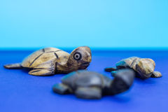 Wooden turtle figurines. On blue background Stock Photography