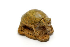 Wooden turtle money Stock Image