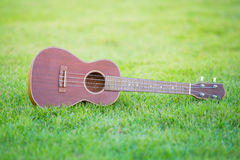 Wooden ukulele  on filed of green grass. Wooden ukulele  at home,Thailand Stock Photography
