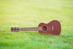 Wooden ukulele  on filed of green grass Royalty Free Stock Photos