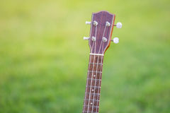 Wooden ukulele  on green grass. Thailand Royalty Free Stock Photos