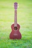 Wooden ukulele  on green grass Stock Image