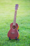 Wooden ukulele  on green grass Royalty Free Stock Image