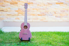 Wooden ukulele  on green grass. Thailand Royalty Free Stock Photo