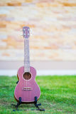 Wooden ukulele isolated on green grass Royalty Free Stock Image