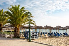 Wooden umbrellas at sandy beach, and palm tree Royalty Free Stock Photos