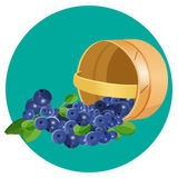 Wooden underlying basket with blueberries realistic vector illustration Royalty Free Stock Photo