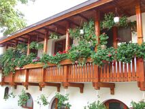 wooden-veranda-with-flower-pots Royalty Free Stock Photos