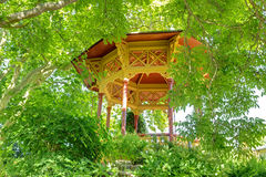 Wooden veranda in the summer garden Royalty Free Stock Images