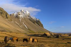 Wooden Viking`s houses near mountains on the Stokksnes Peninsula stock image