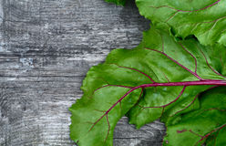 Wooden vintage background with fragment bright green beet haulm Stock Images