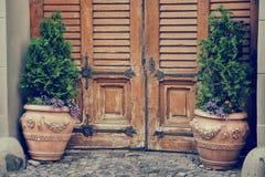Wooden vintage entrance door and flower pots. Stock Photo