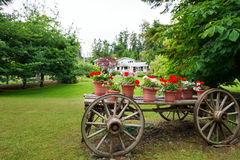 Wooden wagon with flowers. Old wooden wagon filled with flowers and plants in terracotta pots Stock Image