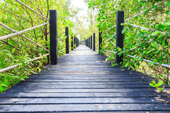 Wooden walk bridge in park Royalty Free Stock Images