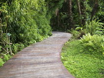 Wooden walk path Stock Photography