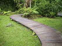 Wooden walk path Stock Photo