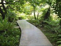 Wooden walk path Stock Image