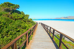 Wooden walk path to the beach Royalty Free Stock Photo