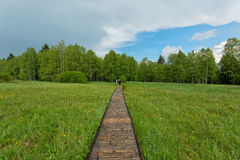 Wooden walk to Chalupska slat Royalty Free Stock Image