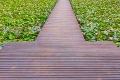 Wooden walk way Stock Photography