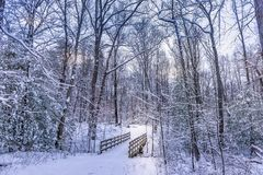 Wooden walking bridge in a frozen forest covered in snow during winter stock photos