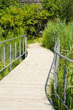 Wooden walking path Stock Image