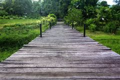 Wooden walking path Royalty Free Stock Photos