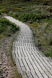 Wooden walking path  on the island of Sylt.. Royalty Free Stock Photo