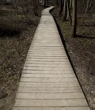 Wooden walking path in park, Latvia,Ventspils. Wooden walking path in park, Latvia, Ventspils Stock Photos