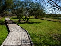 Wooden walking path in the park royalty free stock photo