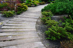 Wooden walking path Royalty Free Stock Photography