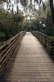 Wooden Walkway Royalty Free Stock Image