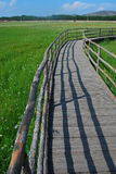 Wooden walkway Royalty Free Stock Images