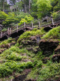 Wooden walkway above a verdant chasm approaching Bushkill Falls waterfall in the Poconos in Pennsylvania. Outdoor nature scene of a wooden walkway next to a Stock Image