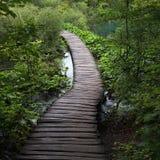 Wooden walkway across lake Stock Image