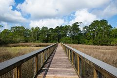 A wooden walkway across a marshy river with white fluffy clouds in a blue sky. This is an image of a image of a wooden walking pier which meanders across a Stock Photos