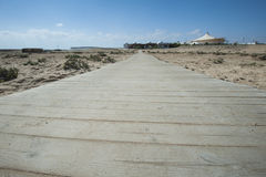 Wooden walkway across sand dune Royalty Free Stock Image