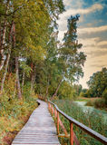 Wooden walkway in autumn Royalty Free Stock Photo