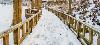Wooden walkway covered with snow  public park. Stock Photo