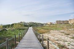 Wooden walkway between the dunes stock image