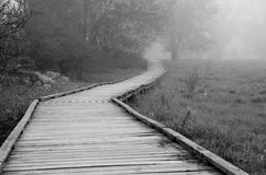Wooden Walkway on a Foggy Spring Morning Stock Image
