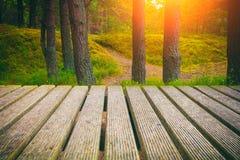 Wooden walkway Royalty Free Stock Photo