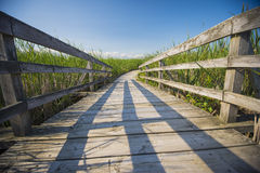 Wooden walkway on the grass Stock Photos