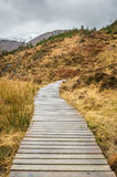Wooden Walkway in the Highlands Royalty Free Stock Images