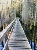 Wooden walkway on a hiking trail across a swamp lake. Smuggler Cove Marine Provincial Park, BC, Canada. Wooden walkway on a hiking trail across a swamp lake Stock Photography
