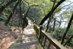 Wooden walkway by the lake of tianzhushan mountain Royalty Free Stock Photo