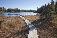 Wooden walkway leading to small trout lake in northern Minnesota stock image