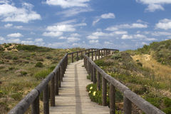 Wooden walkway leading to Bordeira Beach, Algarve,  Portugal Royalty Free Stock Photo